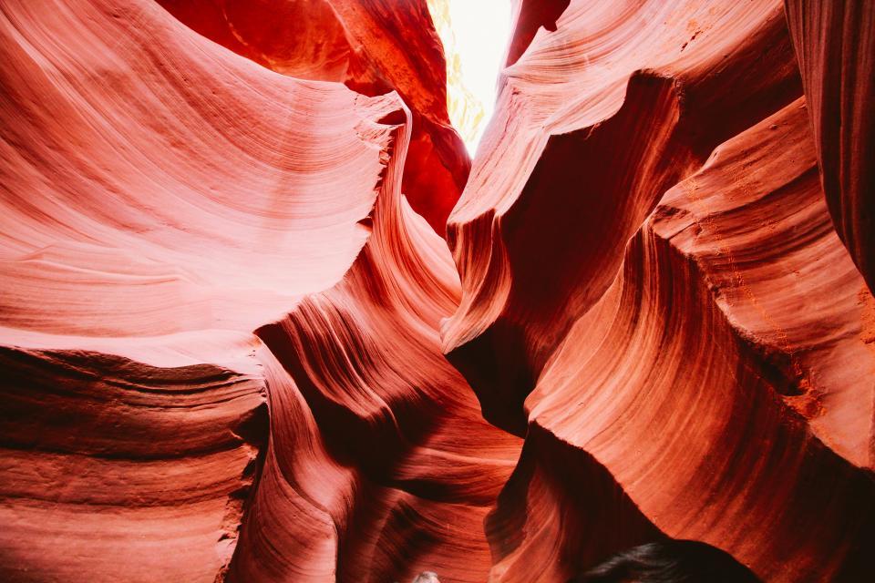 黄石两晚深度-大提顿-西峡谷-拉斯维加斯精品7天