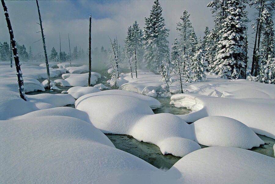 冬日黄石-大提顿-杰克森5日游