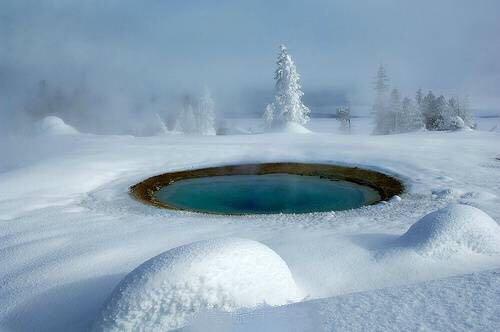 冬日黄石-大提顿-杰克森-羚羊彩穴 8日游