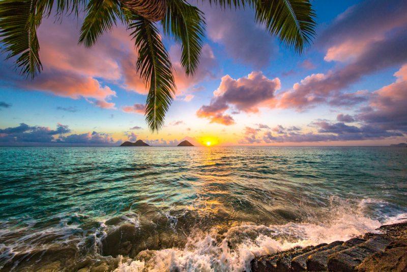 (4天)✨檀香山✨ 第二大战 珍珠港+民族文化 玻里尼西亚 旅游  *精致小团*