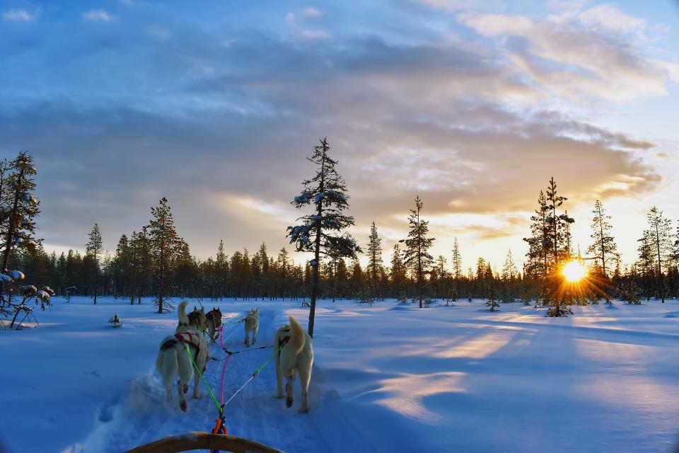 极光和追寻极光的人们 芬兰一地7日游